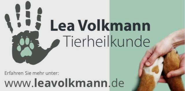 Tierheilkunde Lea Volkmann
