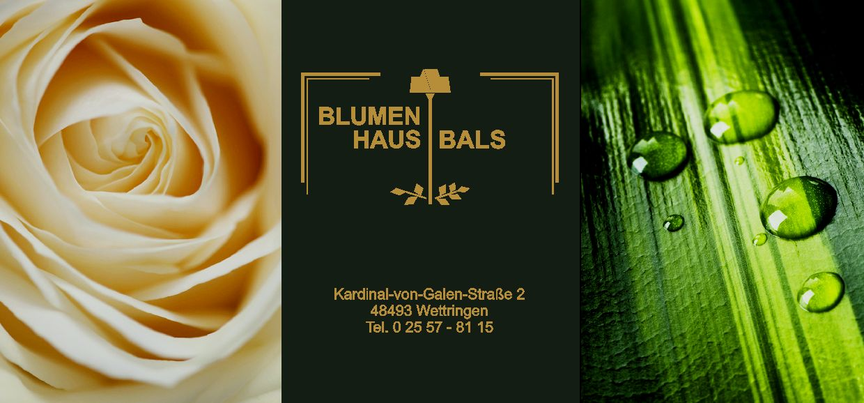 Blumenhaus Bals