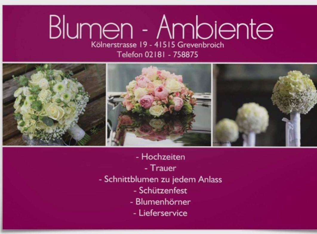 Blumen - Ambiente