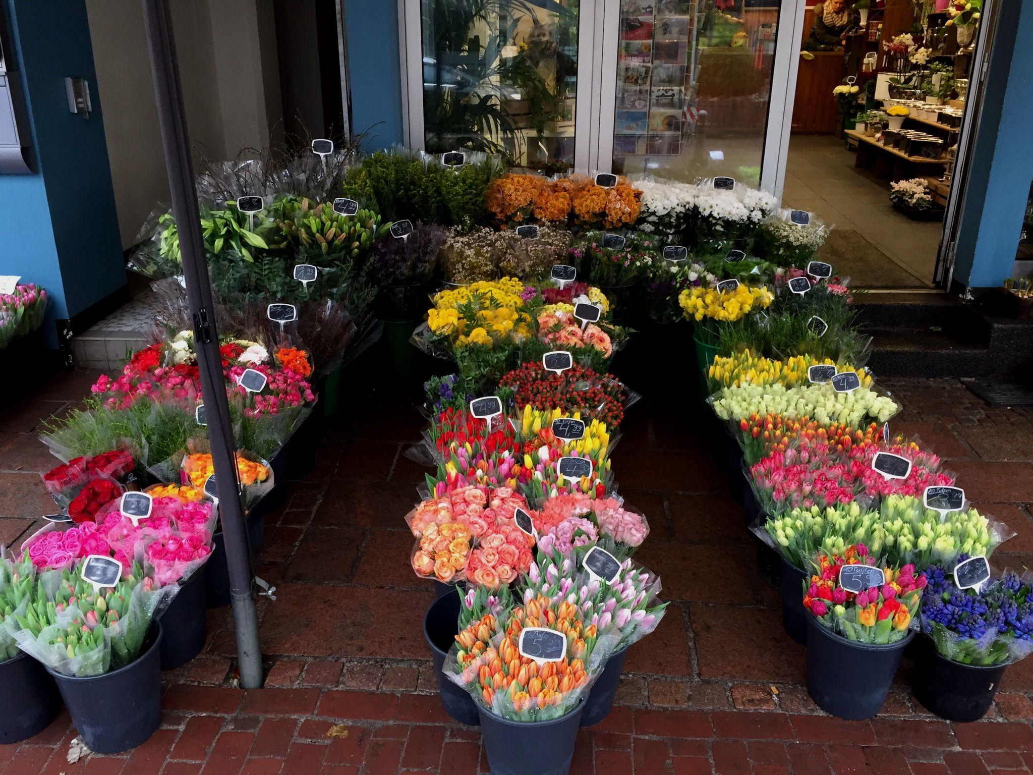 Blumen aus holland