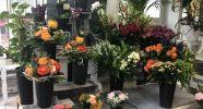 Blumen-Paatsch
