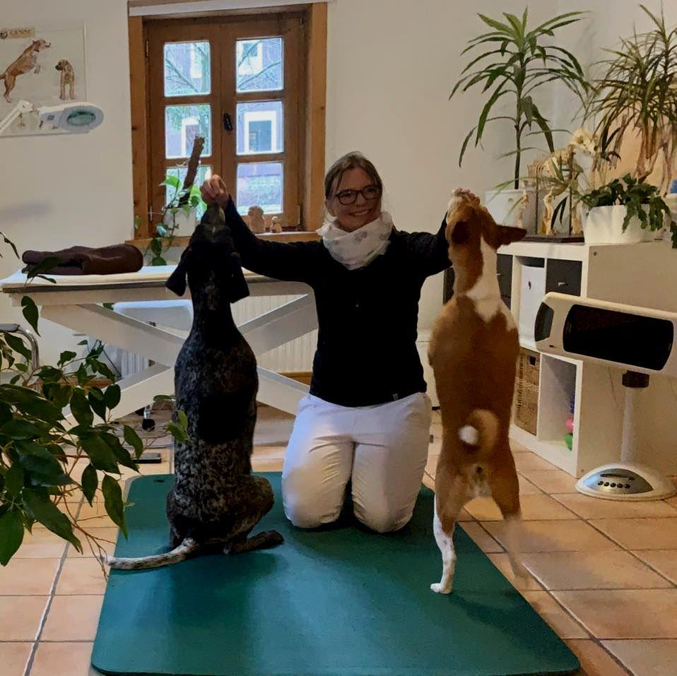 Tierphysiotherapie & Naturheilpraxis