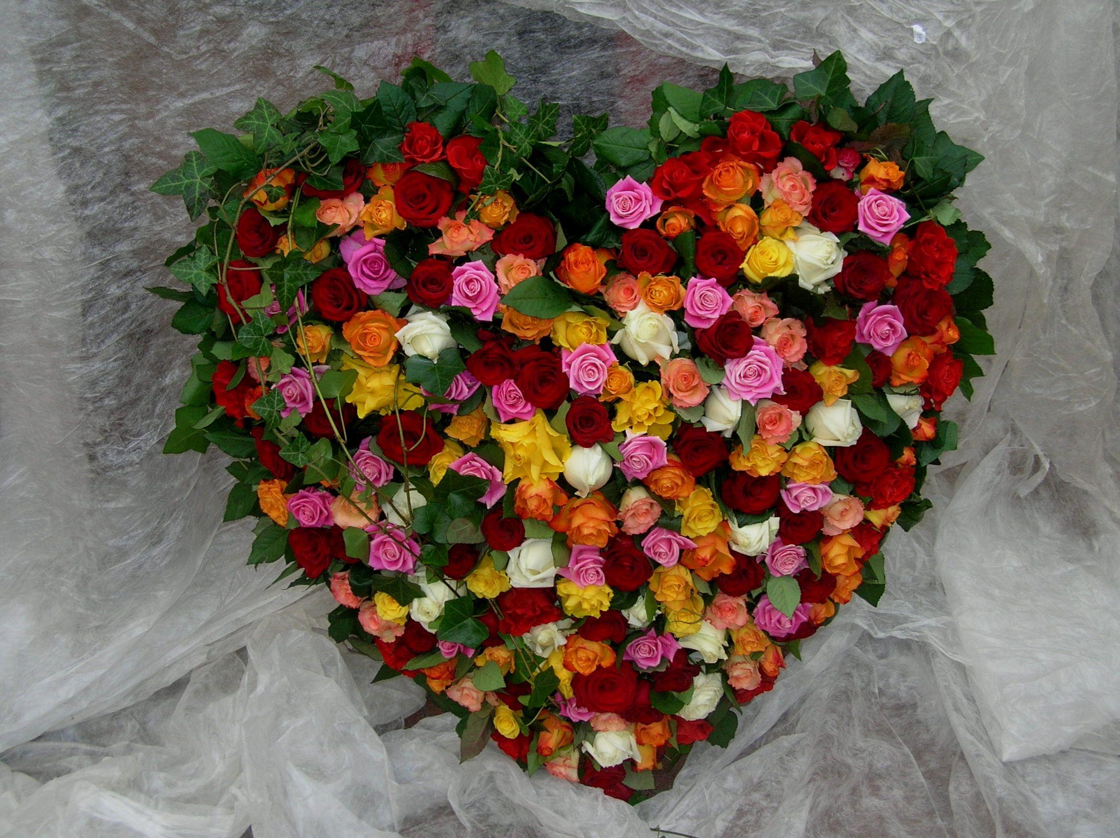 Blumen Weese - Floristik, Gärtnerei