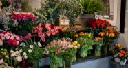 Blattwerk - individuelle Floristik