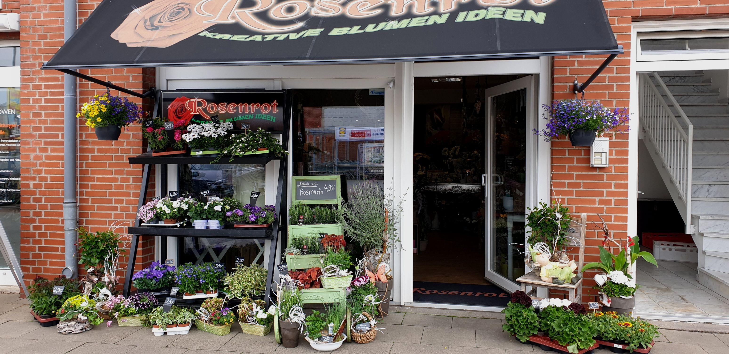Rosenrot kreative Blumen