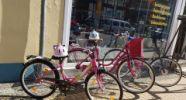 Fahrrad-Fahrzeugzubehör Teut