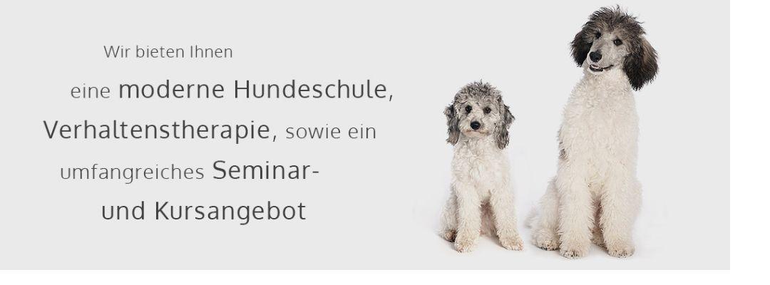 Hundeschule doglove