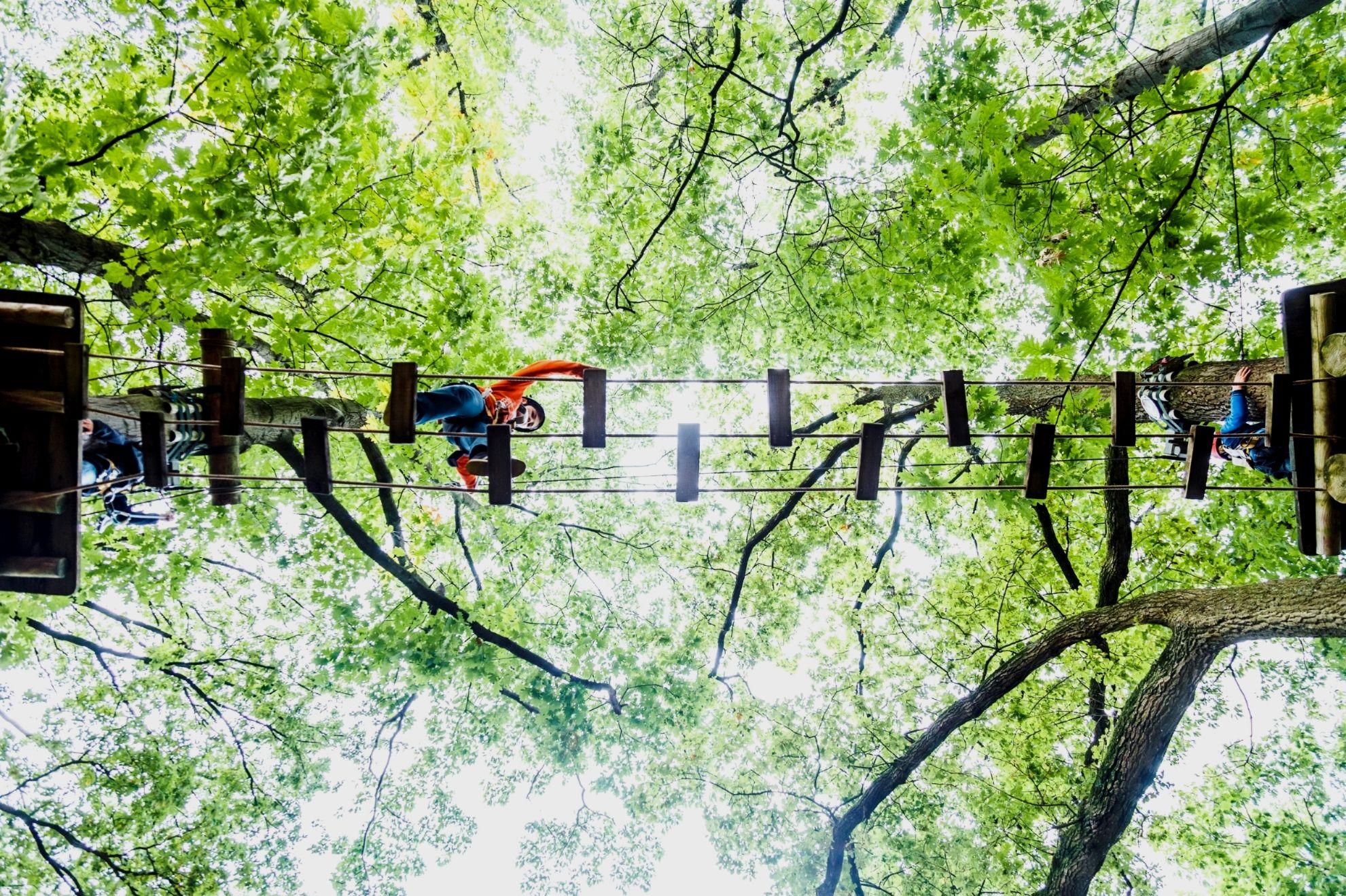 Kletterpark Verden