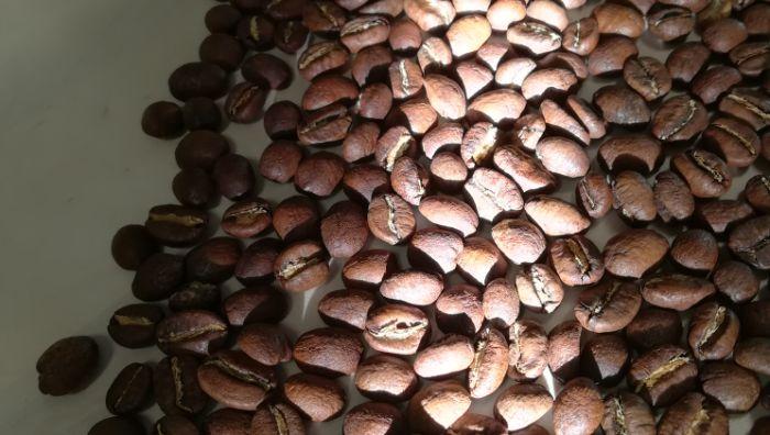 Kaffeewerkstatt Kucha