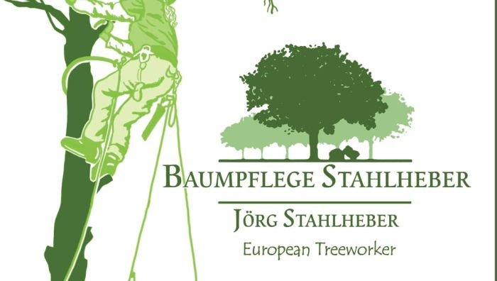 Baumpflege Stahlheber