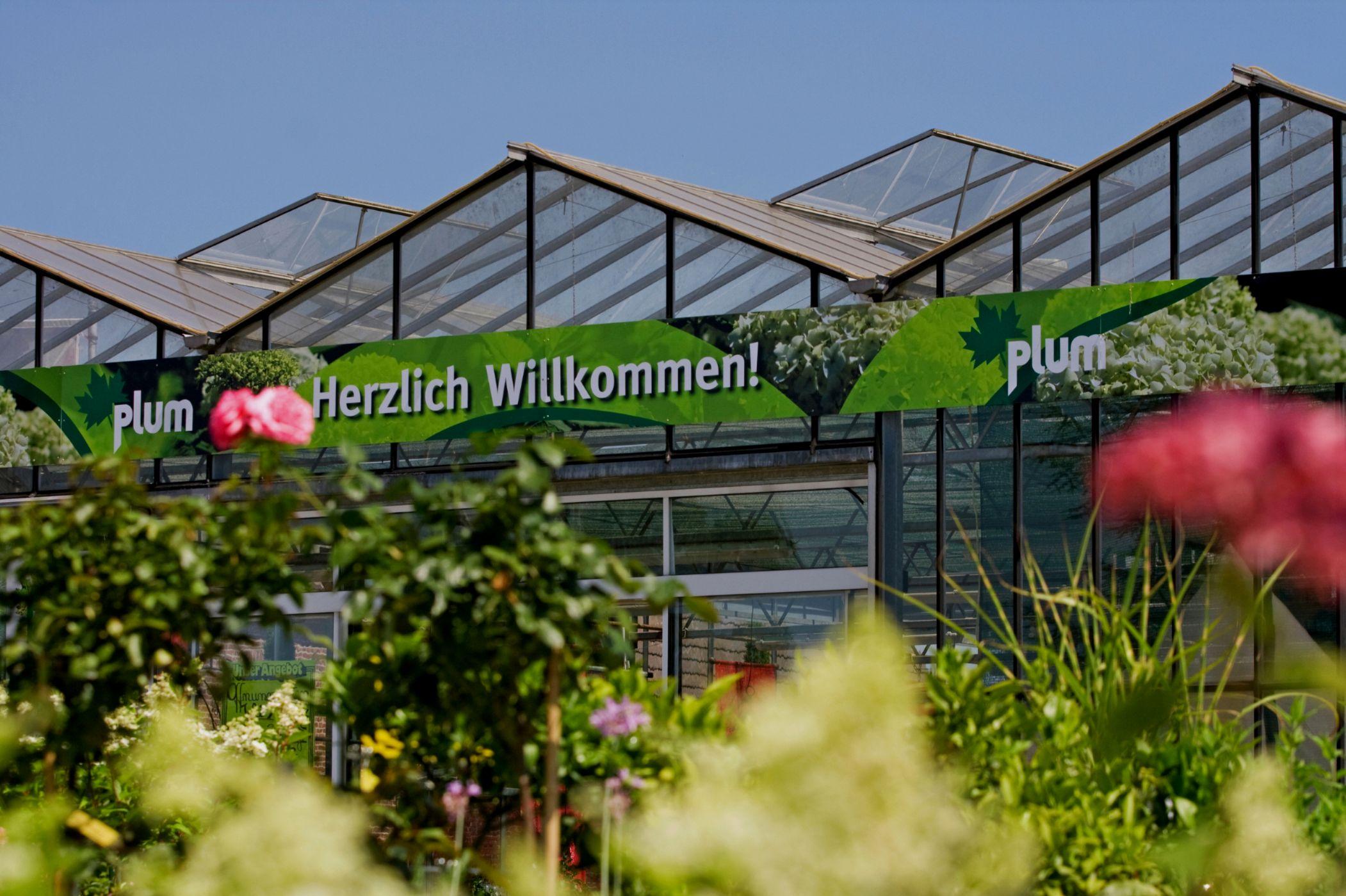 Pflanzenhof Plum
