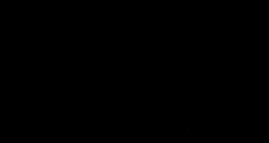 zmyle