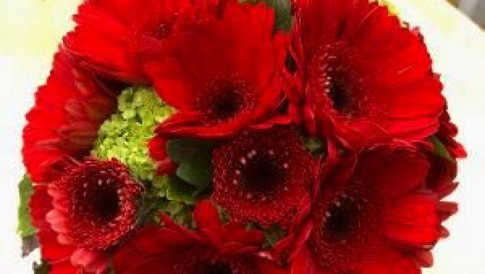 Blumenhaus Behnen