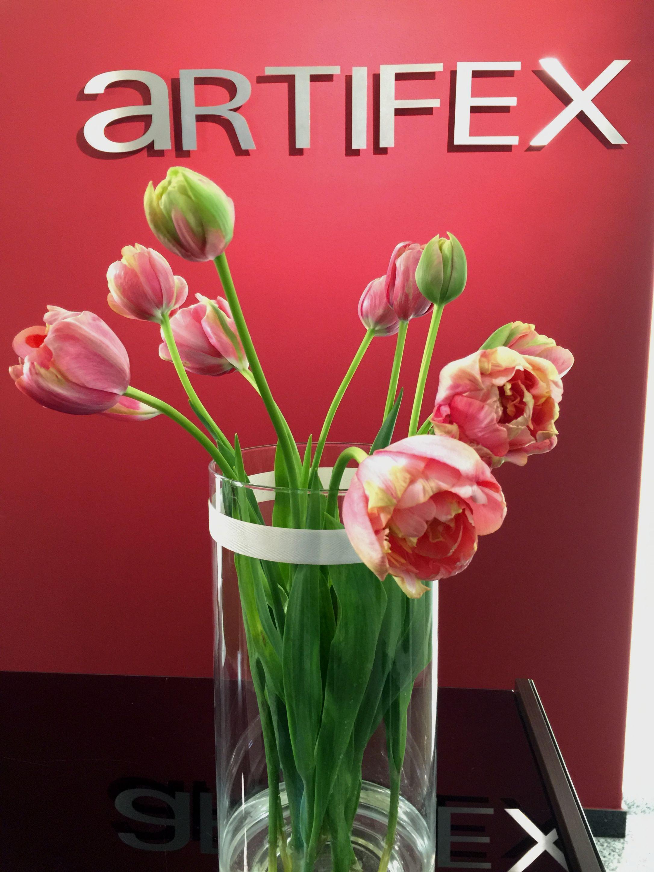 Artifex Hairdesign