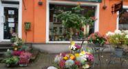 Blütenwerkstatt am Weinberg